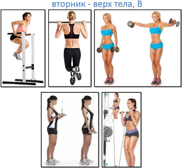 3 идеальные программы тренировок для девушек в тренажёрном зале