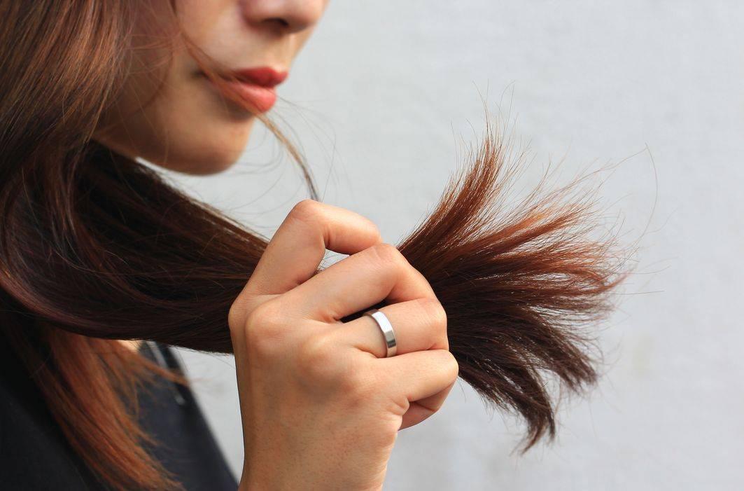 Что делать, если сильно секутся волосы по всей длине? способы восстановления секущихся волос и правила профилактики проблемы