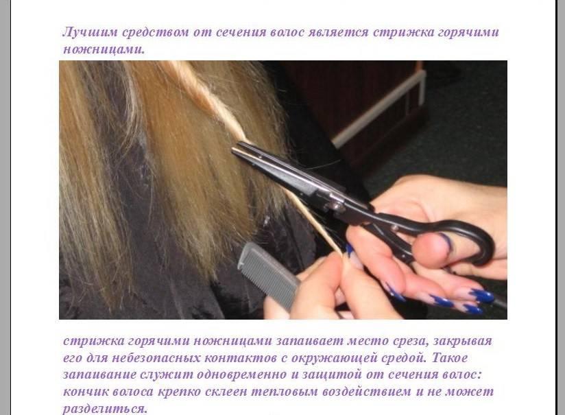 Ломаются волосы: что делать с сухими кончиками и выпадением
