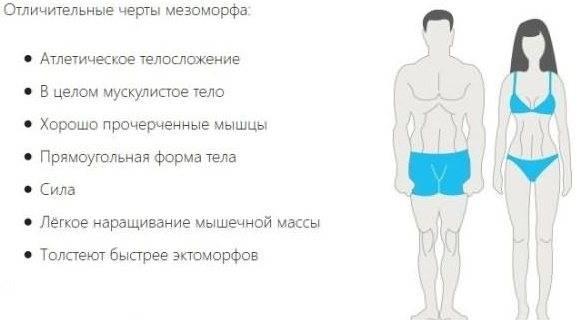О типах телосложения у женщин в картинках