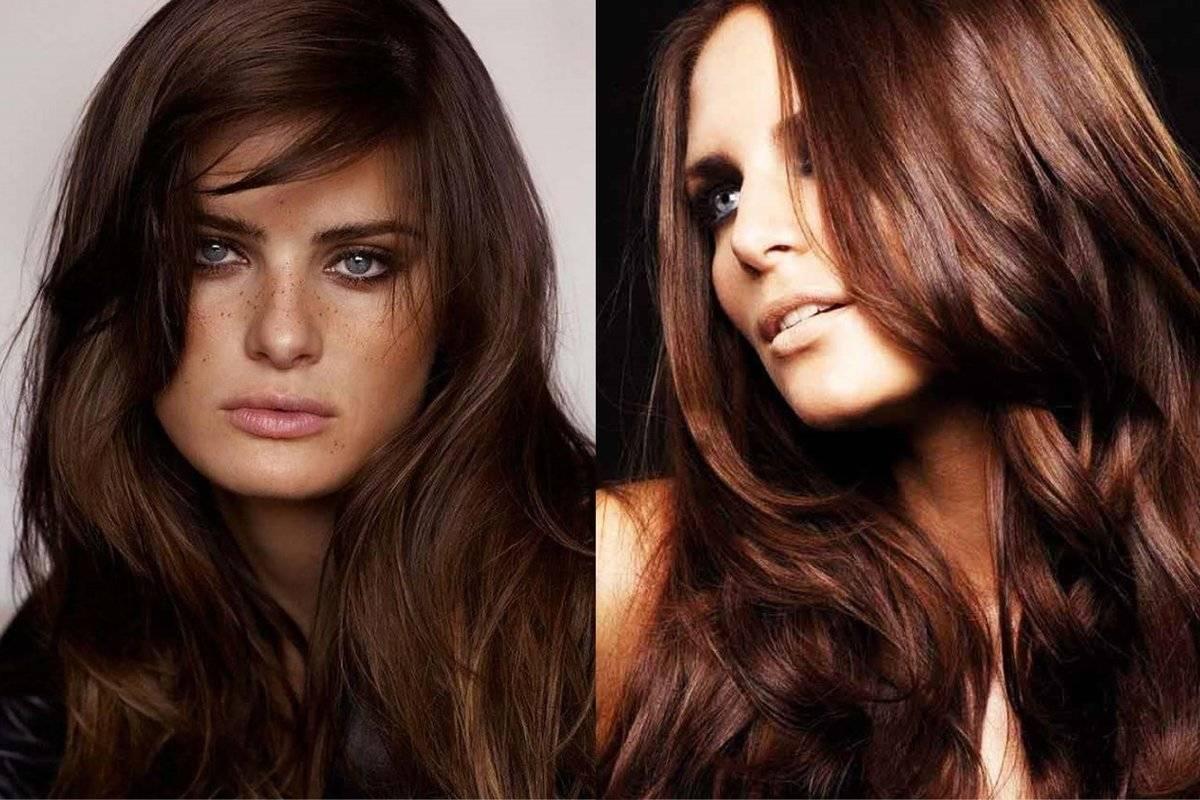 В какой цвет можно покрасить темные волосы? как можно сделать окрашивание брюнетке без осветления? варианты для каштановых и коричневых волос