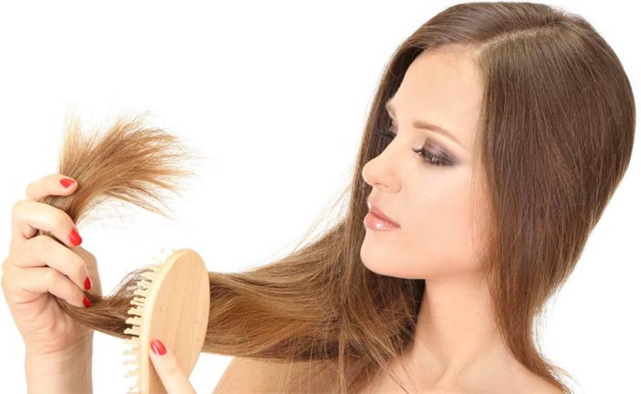 Волосы секутся и ломаются: что делать для лечения очень ломких и секущихся прядей?