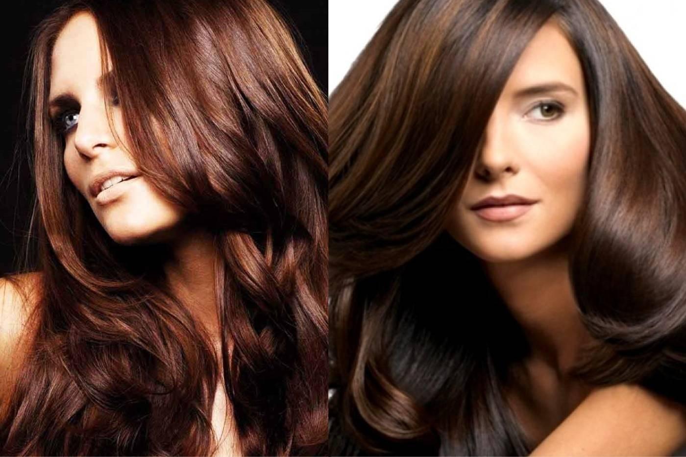 Как покрасить волосы в каштановый цвет волос модные оттенки с фото - уход за волосами