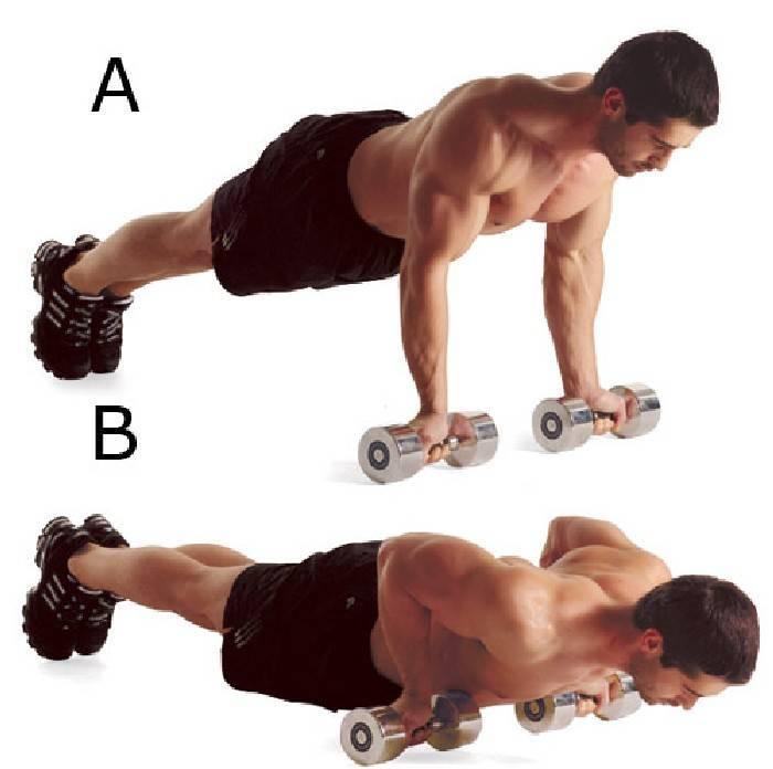 Тренировка дома для девушек на все тело и группы мышц: комплексы силовых и не только упражнений, чтобы составить программу (план занятий спортом) женщине на неделю-месяц