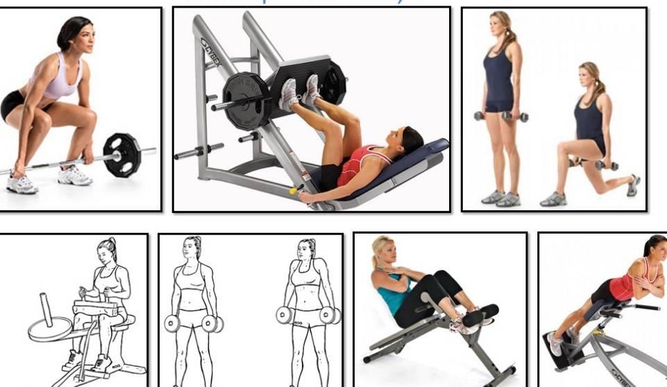 Упражнения для пресса в тренажёрном зале для девушек | fitbreak! всё о фитнесе и бодибилдинге