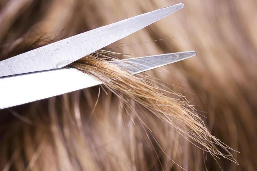 Лечим секущиеся и ломкие волосы в домашних условиях