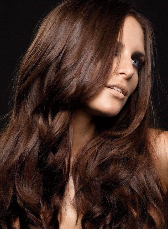Как покрасить волосы в каштановый цвет волос модные оттенки с фото