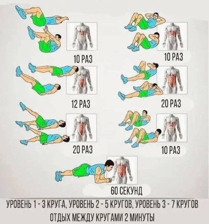 Как накачать мышцы: идеальная программа тренировок в тренажёрном зале - лайфхакер