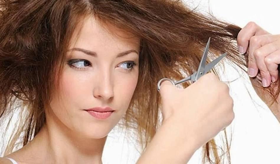 Как восстановить сухие волосы методами народной медицины