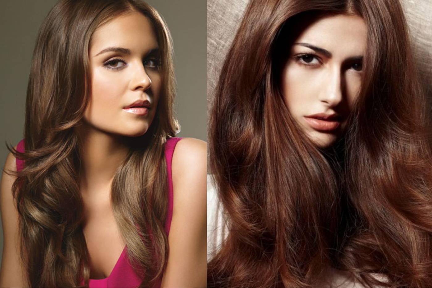 Каштановые волосы у девушек: фото, палитра, все лучшие оттенки