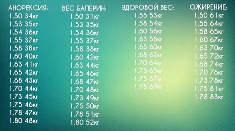 Какой рост и вес должен быть у модели александра сергиенко