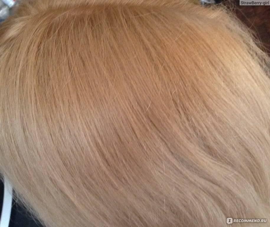 Краска для волос syoss палитра цветов 2019 год