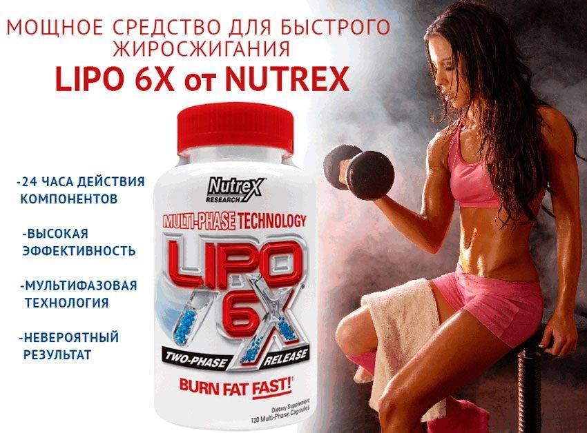 Липо 6 – жиросжигатель для женщин: инструкция препарата - allslim.ru
