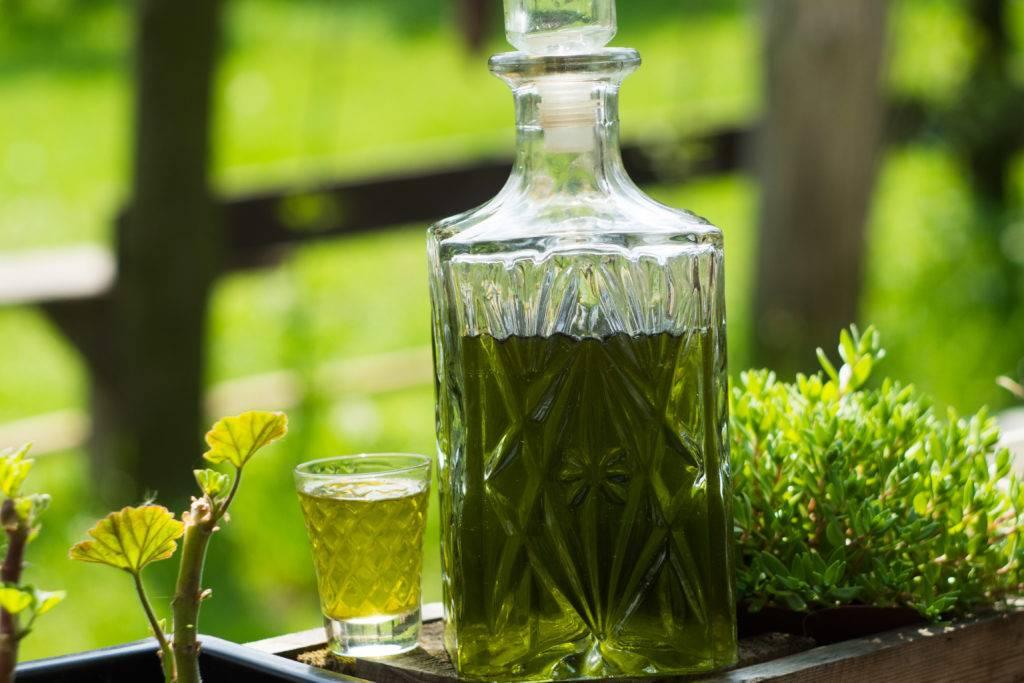 Густые, блестящие и крепкие волосы: рецепты для ополаскивания травами