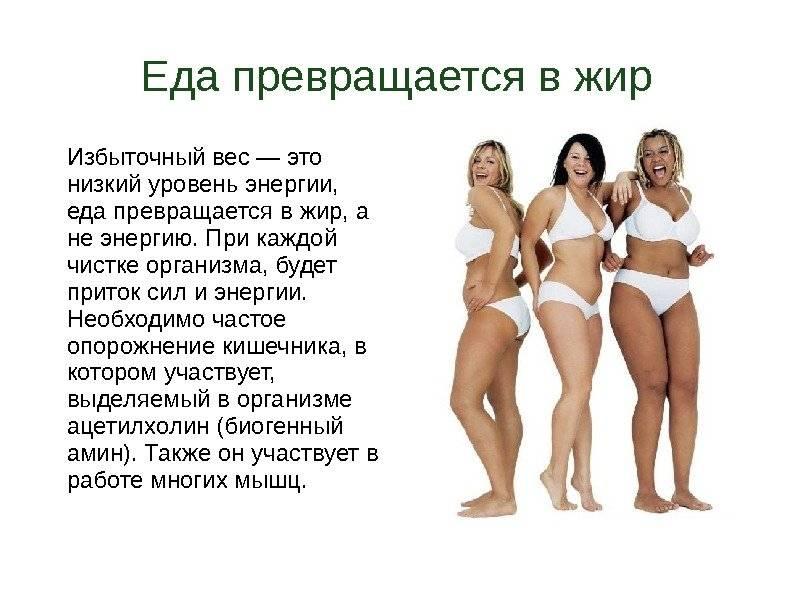 Основные типы телосложения: рекомендации по питанию и тренировкам