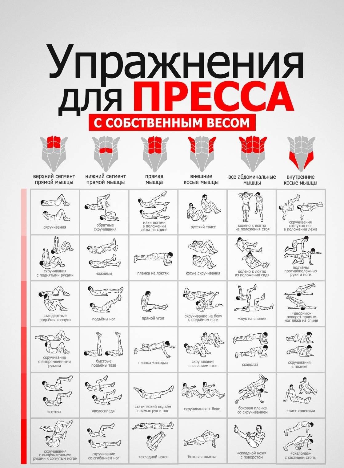 Упражнения на пресс в тренажерном зале