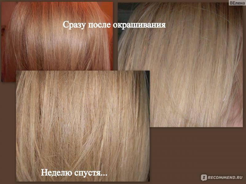 Палитра цветов краски для волос: эстель, гарньер, палет, сьес, лонда, капус, преферанс и матрикс