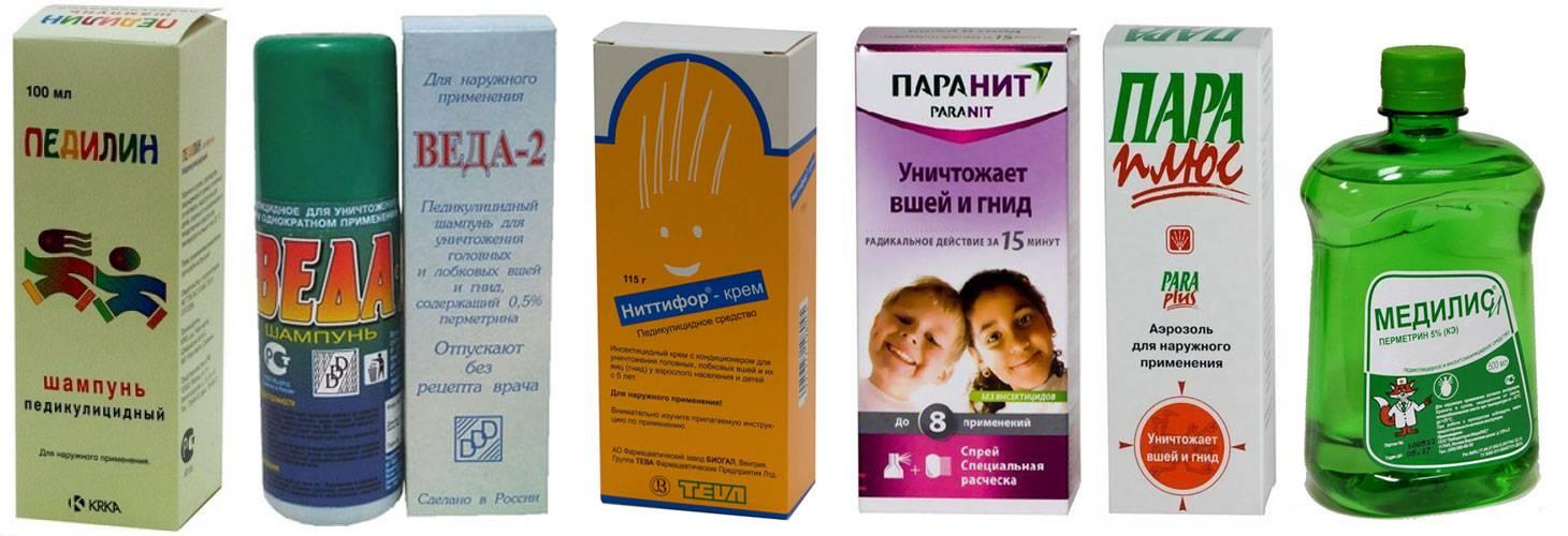Шампунь от вшей и гнид: эффективные способы лечения педикулеза