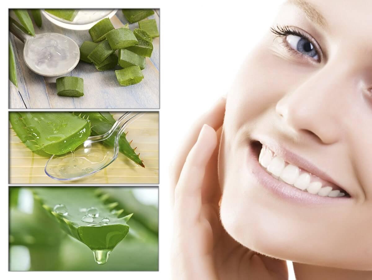 Применение алоэ для волос в домашних условиях: рецепты масок из сока от выпадения, для роста и густоты