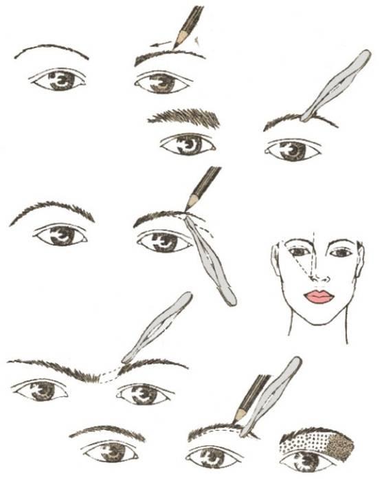 Как накрасить брови тенями: поэтапная инструкция