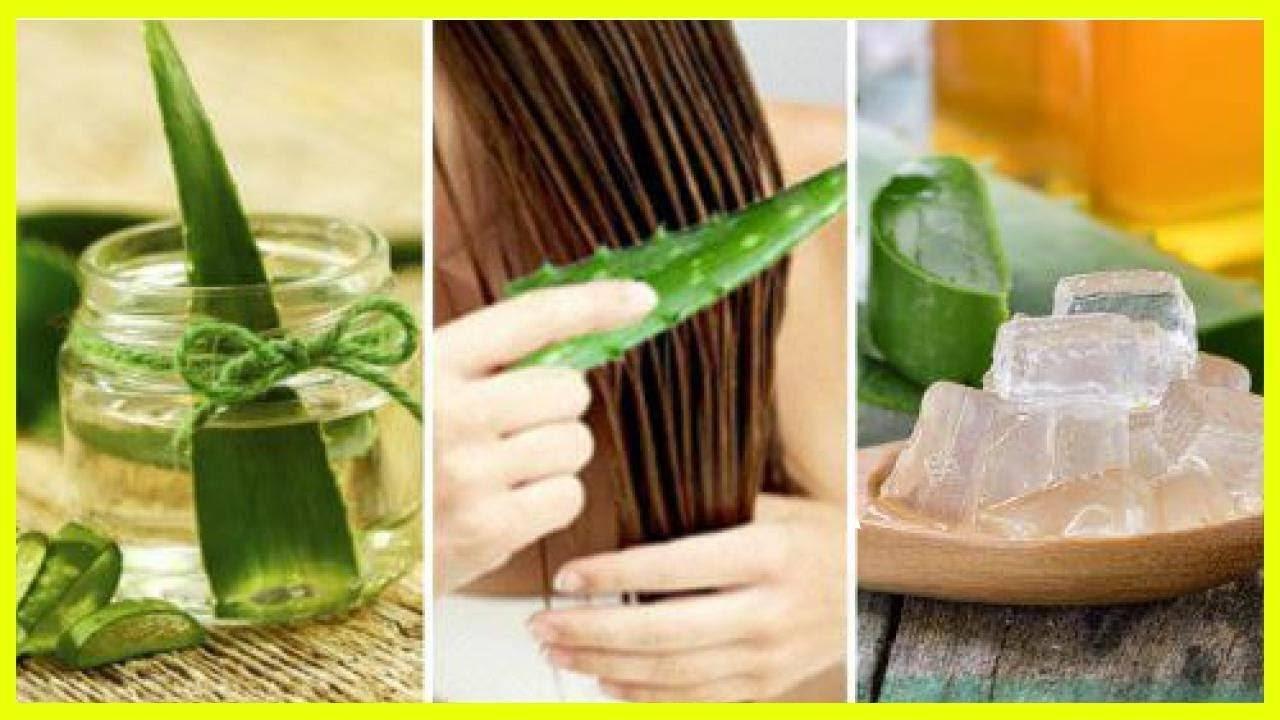 Маски для волос с алоэ - восстанавливаем волосы