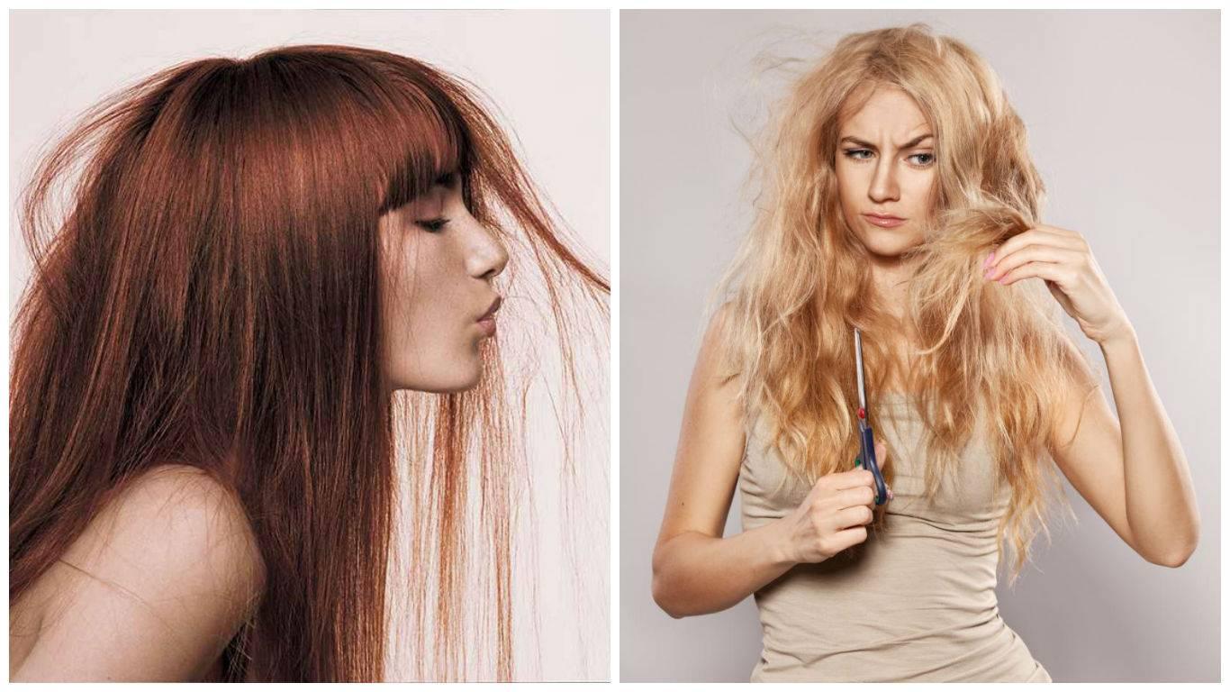 Как восстановить сухие и поврежденные волосы в домашних условиях?