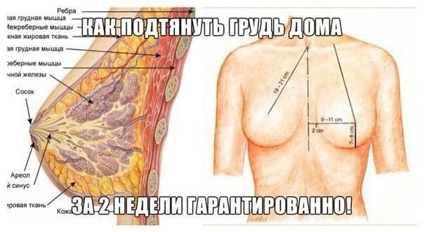 Как дома уменьшить размер груди