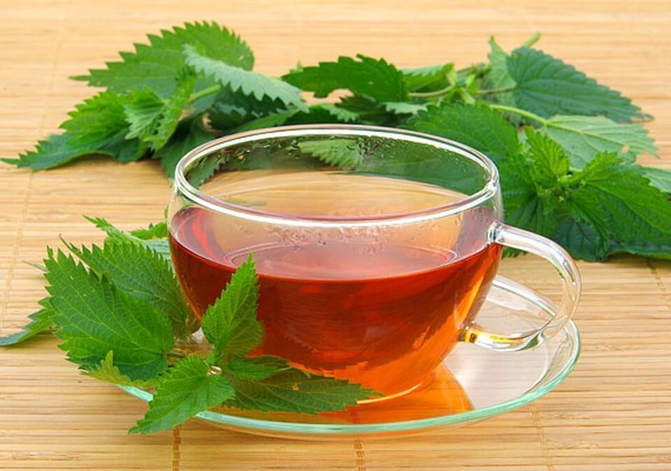 Крапива от простатита чай небактериальный простатит лечение