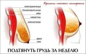 Варианты уменьшения груди от дома до клиники