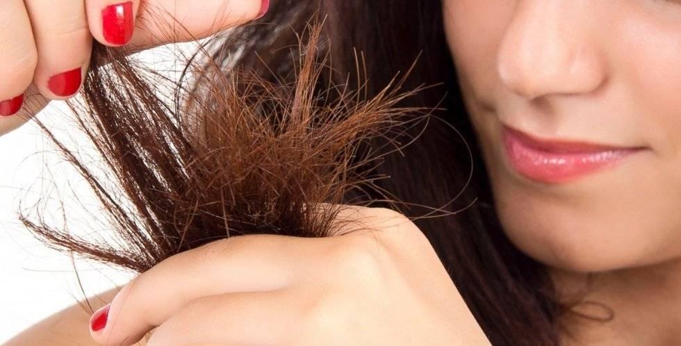 Как восстановить сожженные волосы?